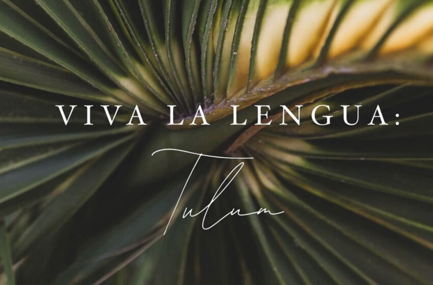 Around the World with Viva La Lengua: Curated Travel to Embrace the Culture